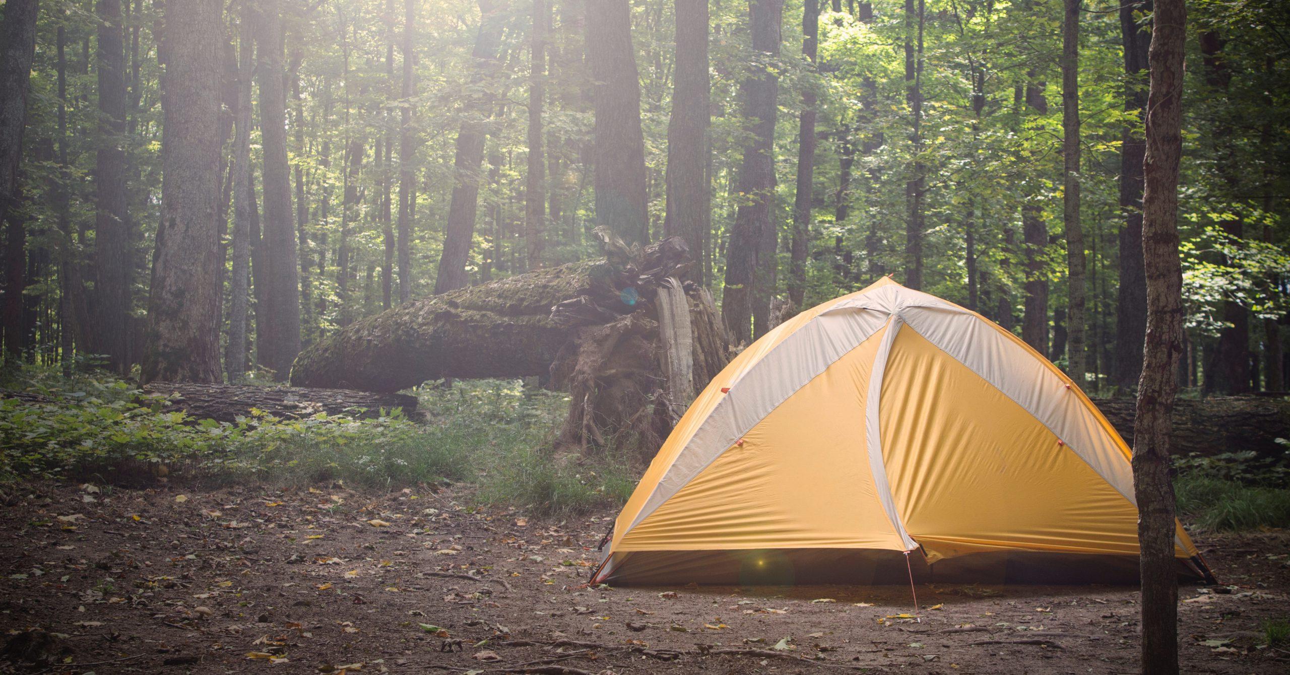 Darf ich im Wald übernachten?