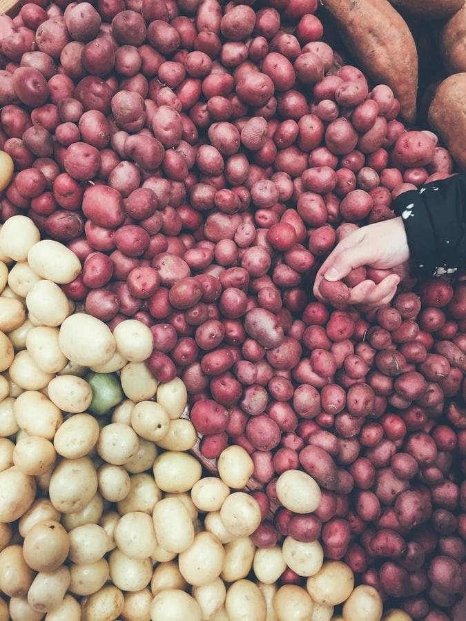 So bekommt ihr auch als vegetarier alle nötigen nährstoffe