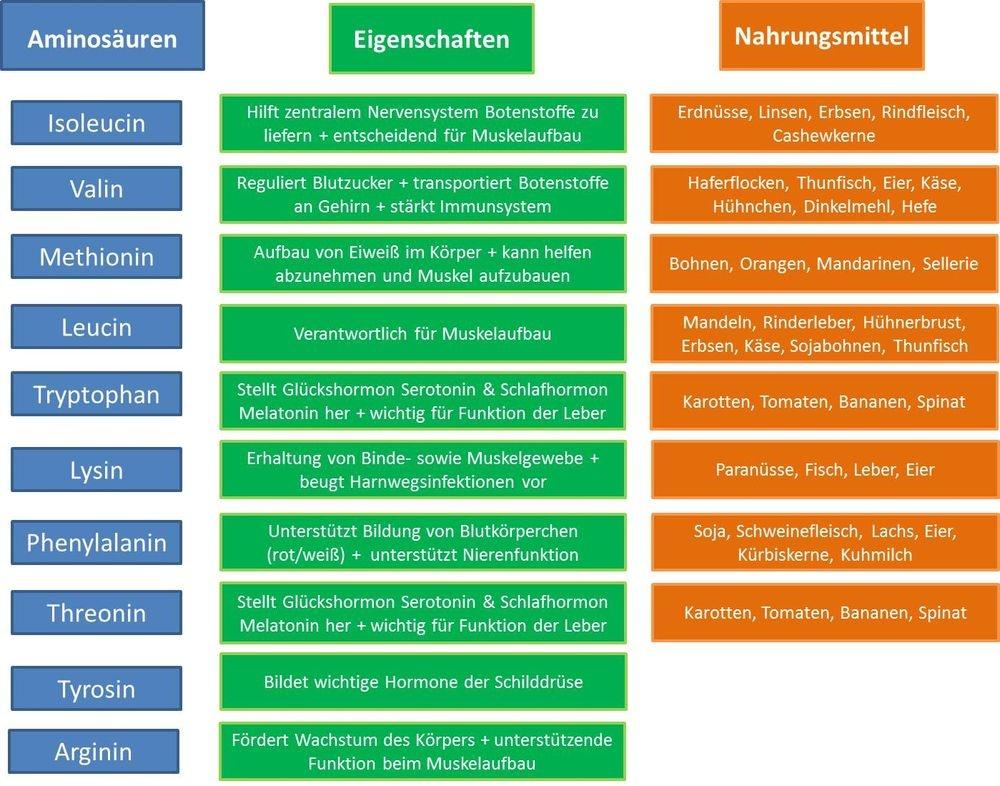 Aminosäuren: Essentiell für Muskelaufbau und Regeneration