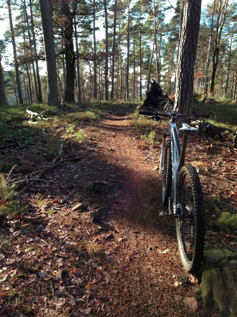 Biken in Heidelberg: Feeling wie in der Toskana