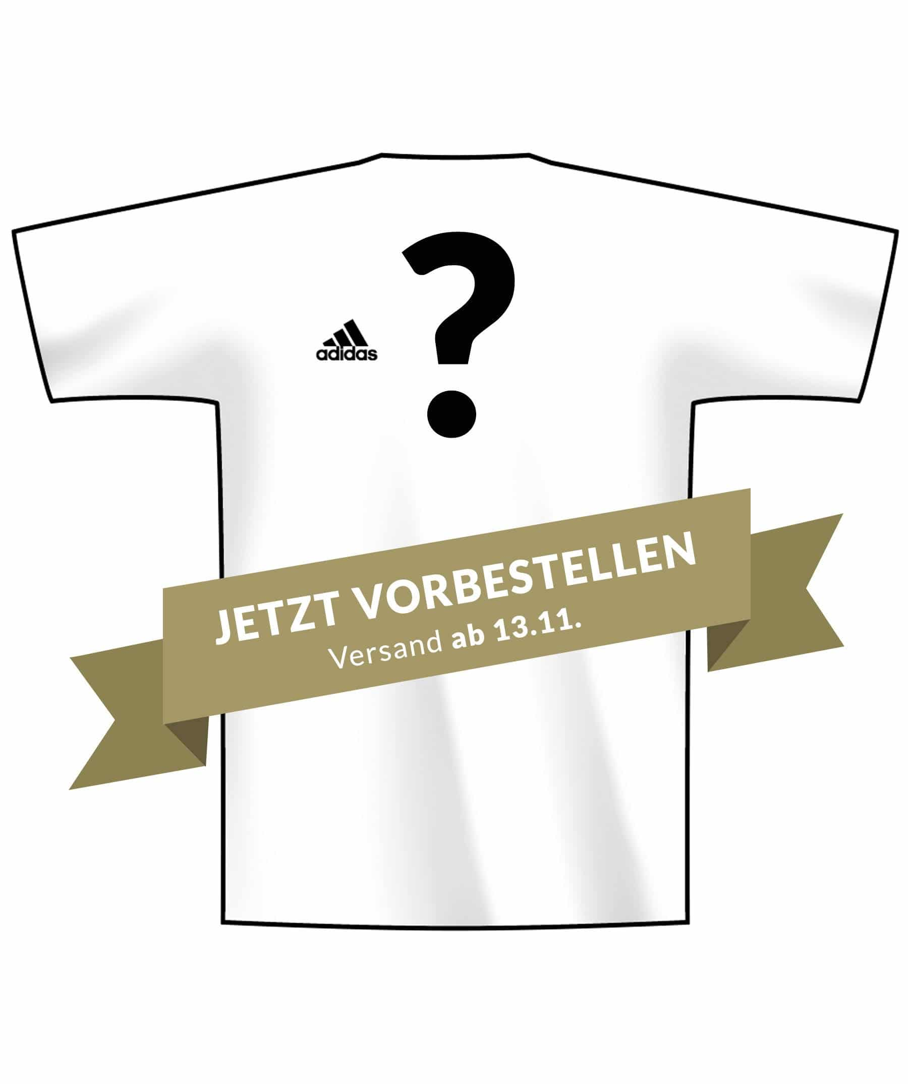DFB Home-Jersey Release