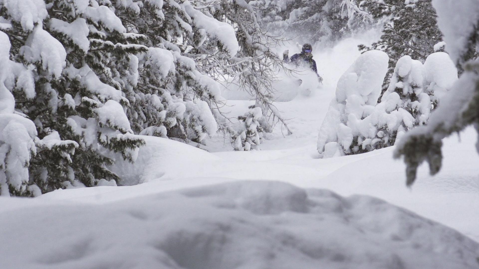 Die 3 besten Freeride-Spots in den Alpen