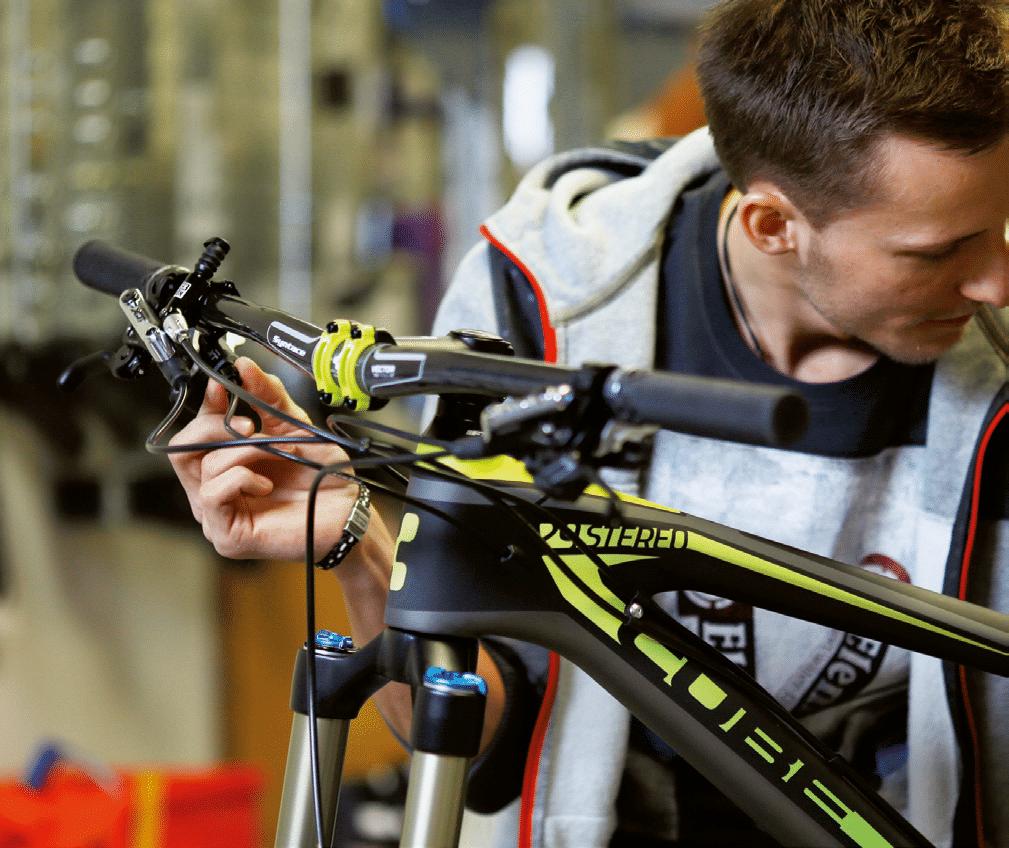 engelhorn sports Bike-Service