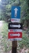 Flowtrail: MTB-Freeride für jedermann zwischen Golfhotels und Sterneköchen