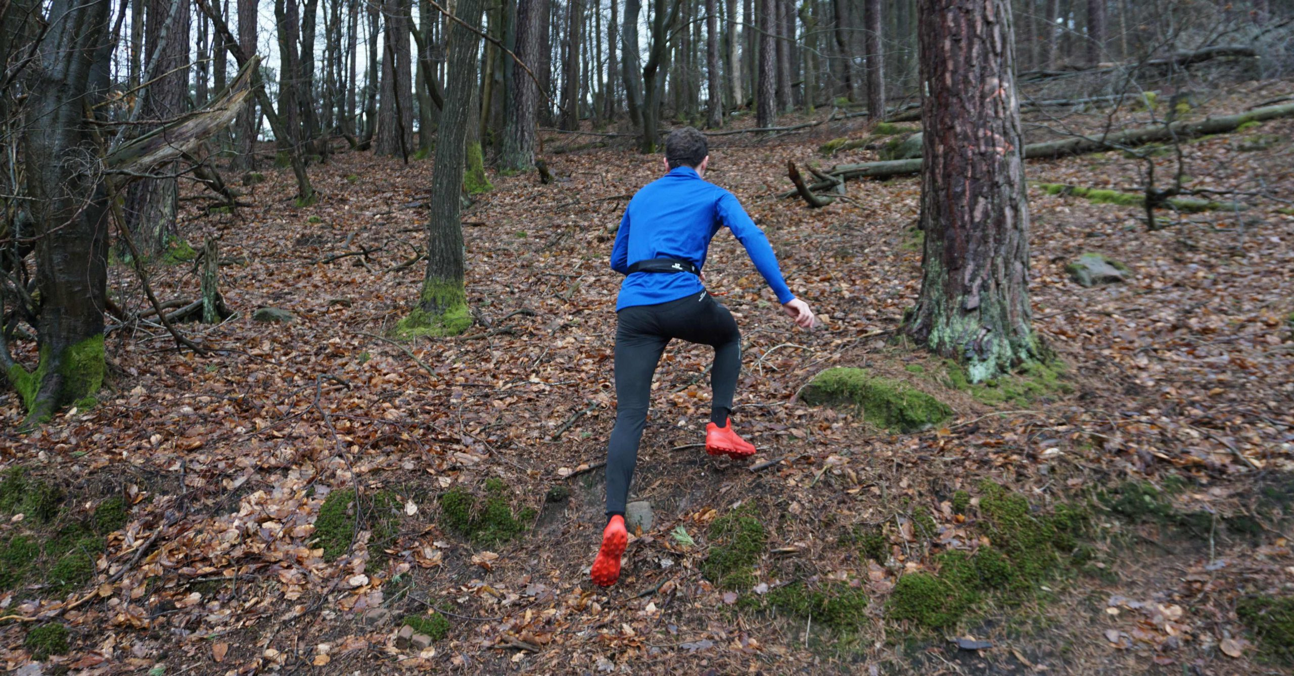 Laufschuh des Monats – Salomon Speedcross 5