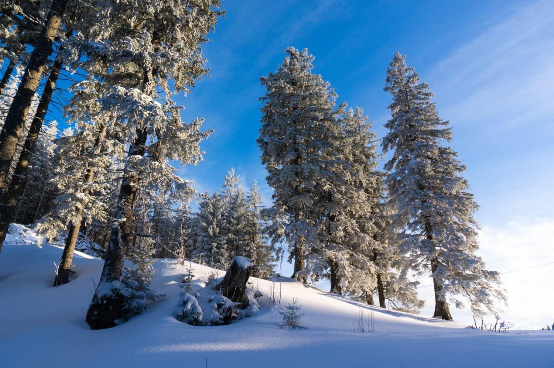 Schneeschuhwandern Allgäu – auf die Alpspitze (1575m)