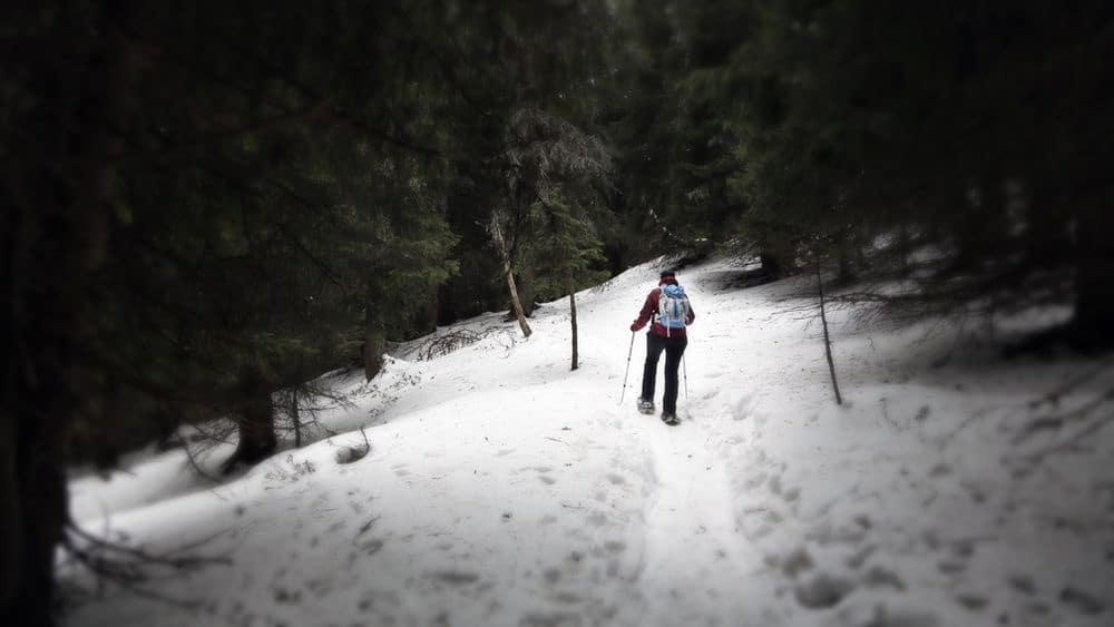 Schneeschuhwandern auf der Seiser Alm – Zwei Tourentipps