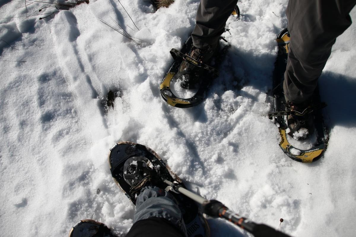 Schneeschuhwanderung auf das Herzogenhorn