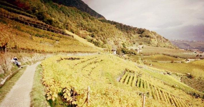Waalwege in Meran: Perfekt für Herbstwanderungen!