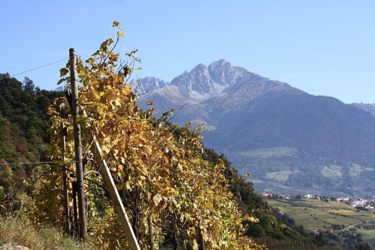 Wandern im Herbst: 3 der schönsten Gegenden