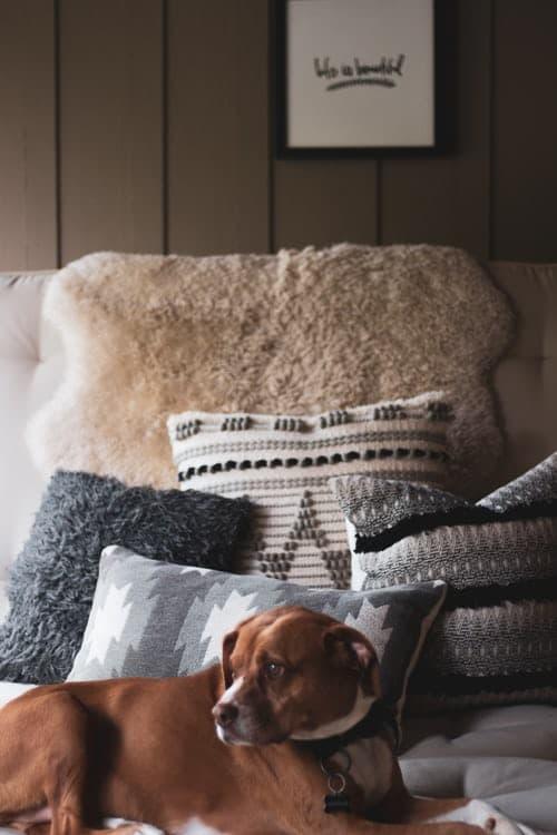 Winterzeit mit Decken