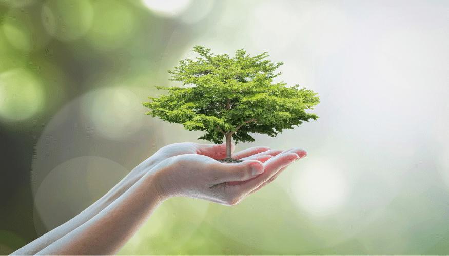 Nachhaltigkeit in der Outdoorbranche