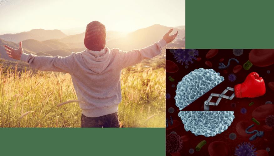 Tägliches Spazieren, Auswirkungen, Glücklich sein, Immunsystem