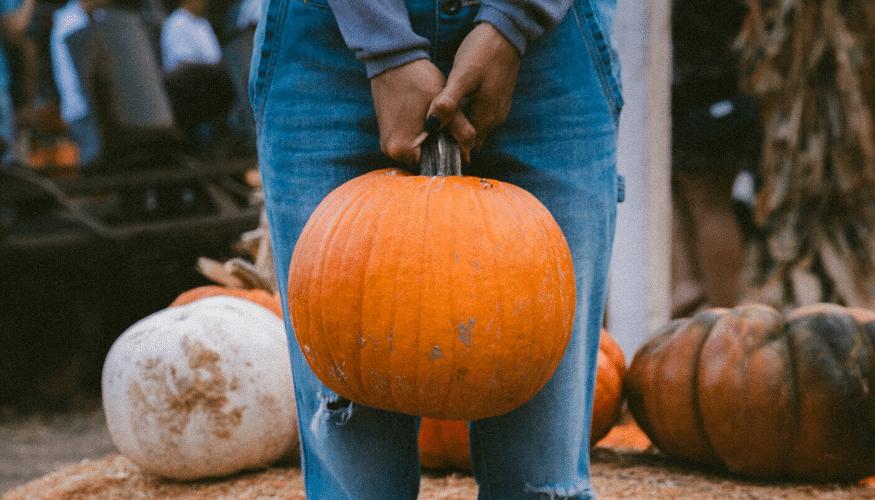 Modebewusst durch den Herbst – 5 Trends für Sie